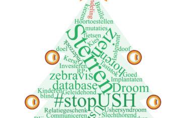 wordcloud-ush-kerst-piek